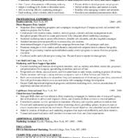 Resume Samples For Data Analyst by Professional Objective Data Analyst Resume Samples For Job