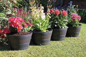 Half Barrel Planter by Barrel Planters
