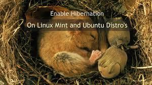 Resume From Hibernation Windows 8 How To Enable Hibernation On Linux Mint And Ubuntu Distro U0027s