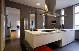 Kitchen Design For Apartment Modern Apartment Kitchen Designs Ordinary Iagitos