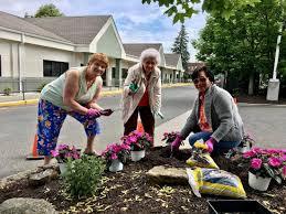 Club Summer Garden - elmwood hall garden club summer planting danbury senior resources