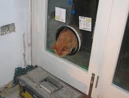 Cat Flap Patio Door What Cat Flap In Glazed Patio Door Is And What It Is Not