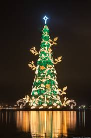 Modern Christmas Trees 19 Best For Jax Images On Pinterest Christmas Trees Xmas Trees