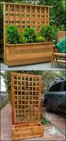 852 best lattice images on pinterest privacy screens gardening