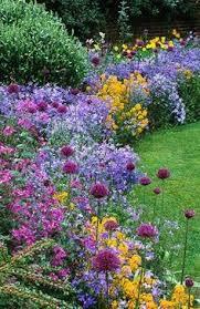 summer flower all summer flowering perennials garden