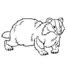 the mitten coloring page badger coloring page projects to try pinterest 100 free and