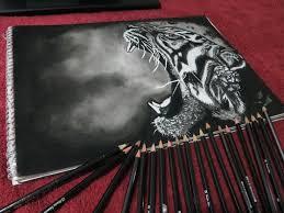 tiger roar drawing by skrillex8 on deviantart