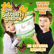 butterfly garden butterfly house as seen on tv shop