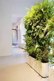 493 best green walls images on pinterest vertical gardens