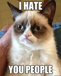 I Hate People Meme - i hate you people cat meme cat planet cat planet
