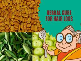 hair loss treatment for men u0026 women ayurvedic natural home