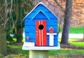 birdhouse home decor bird house decorating ideas decorative bird houses u2013 a fusion