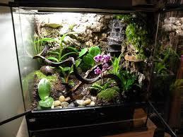 10 best snake enclosure images on pinterest fish tanks pisces