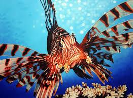 marine life curaçao chronicle