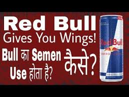 Side Effects Of Bull Energy Redbull Benefits Side Effects Fitness Facts
