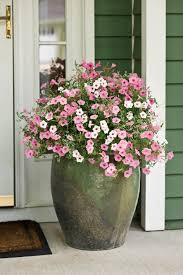 Flower Pots - 29 best front door flower pots ideas and designs for 2017