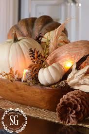 fall pumpkin decoration best 25 small pumpkins ideas only on pinterest mums in pumpkins