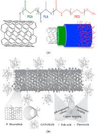 ijms free full text surface modified multifunctional and