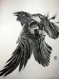 25 trending crow ideas on pinterest crows raven and ravens