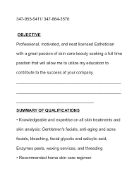 makeup artist resume sample pink blue script creative templates by