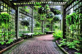 Ideas For Metal Garden Trellis Design Hop Trellis Design Trellis Design In Front Of The House