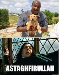 Somali Memes - memes of somalis memesofsomalis twitter