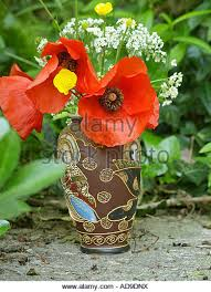 Vase With Red Poppies Poppies In Vase Stock Photos U0026 Poppies In Vase Stock Images Alamy