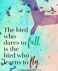37 best birds quotes sayings about flying birds picsmine