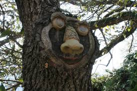 photos all the best tree faces talking trees for