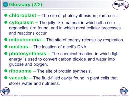 which plant cell organelle uses light energy to produce sugar boardworks gcse additional science biology animal and plant cells