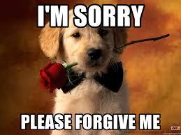 Forgive Me Meme - i m sorry please forgive me forgiveness puppy meme generator