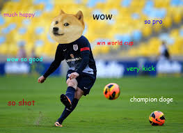Doge Know Your Meme - doge can football doge know your meme