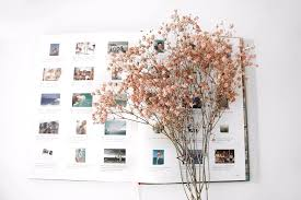 Drying Flowers In Books - dry flowers in u201cthank you u201c cards jackiecambron