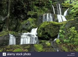 Tennessee national parks images Waterfall from great smoky mountain national park tennessee stock jpg