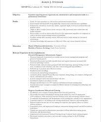 free executive resume templates executive resume samples 10