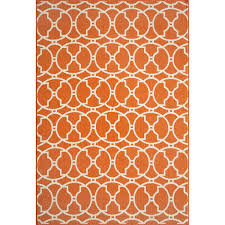 Indoor Outdoor Rugs 4x6 8 Best Dog Friendly Rugs Images On Pinterest Area Rugs 4x6 Rugs
