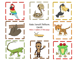 29 best rain forest images on pinterest draw drawings and