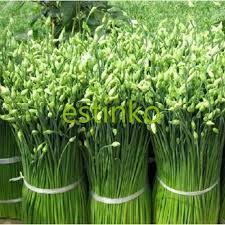 chinese leek seeds 50pcs bag seeds vegetables organic original