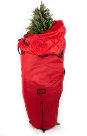 upright tree storage bags rainforest islands ferry