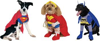 Halloween Costume Cape Dog Halloween Costumes Healthy Paws