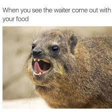 Memes That Make You Laugh - amusing memes to make you laugh out loud 42 pics picture 13