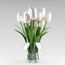 white tulips ornamental plant 09 white tulips 3d model cgtrader