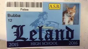 cat high yearbook california high school gives student id to well known cat abc news