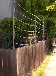 simple hop trellis u2013 outdoor decorations