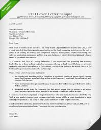 ceo cover letter exles executive cover letter exles ceo cio cto resume genius