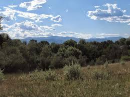 plant communities environmental nature center go hike colorado cattail trail majestic view nature center