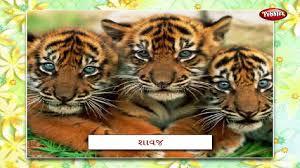 animal babies in marathi learn marathi for kids marathi