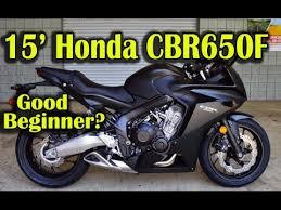 honda motorcycle 600rr 2015 honda cbr650f 600rr or 650f beginner motorcycle youtube