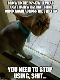 The Struggle Is Real Meme - meme challenge 44 the struggle is real this cat needs a new