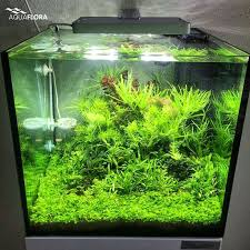 Takashi Amano Aquascaping Techniques 136 Best Aquascape Images On Pinterest Aquarium Ideas